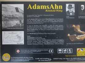アダムの先祖の画像