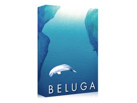 ベルーガの画像