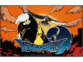 ウィングスピリッツ(Wing Spirits)
