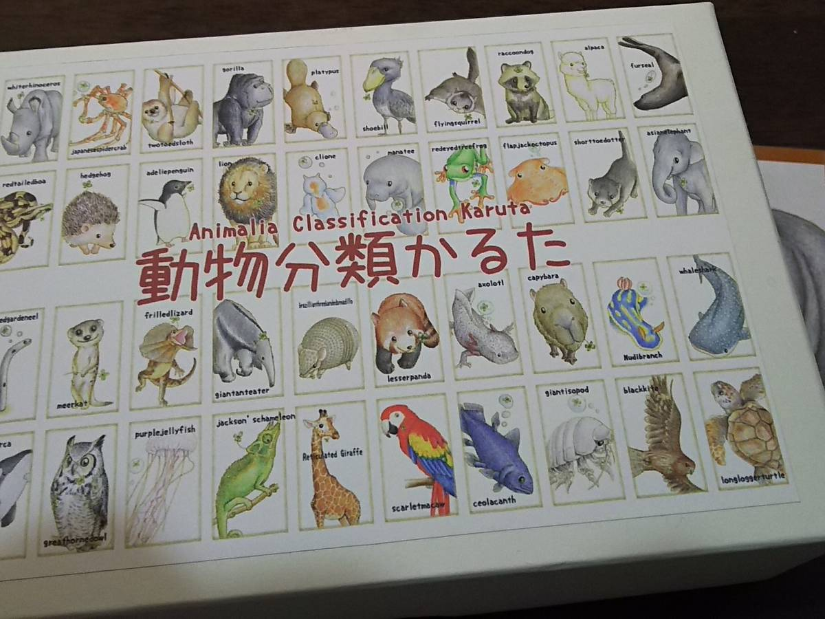 動物分類カルタ(Animalia Classification Karuta)の画像 #38197 まつながさん