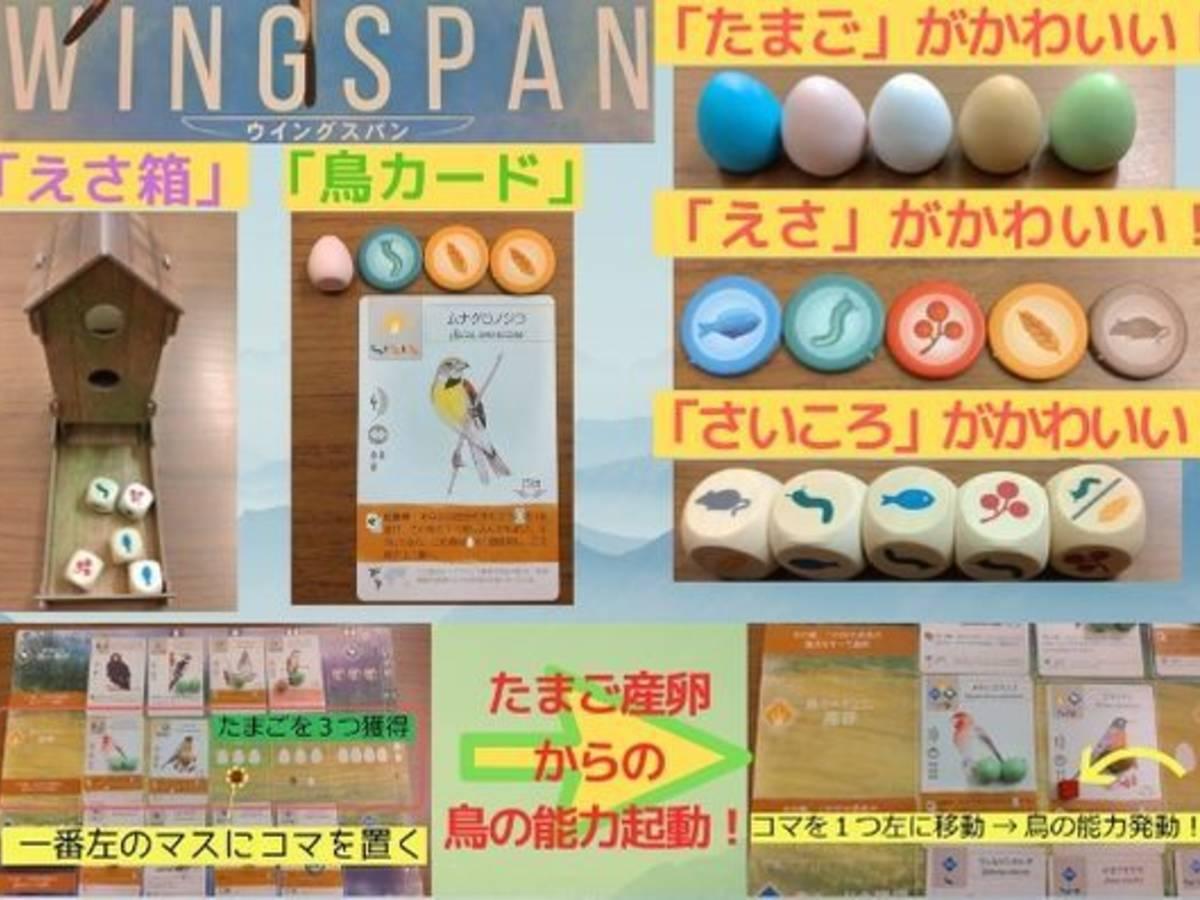 ウイングスパン(Wingspan)の画像 #56466 かばぞうさん