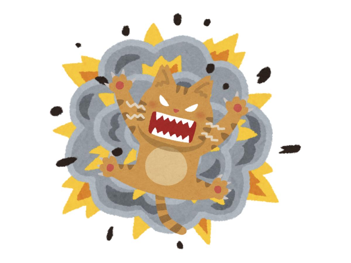 こねこばくはつ(Exploding Kittens)の画像 #65590 ゆきあそびさん