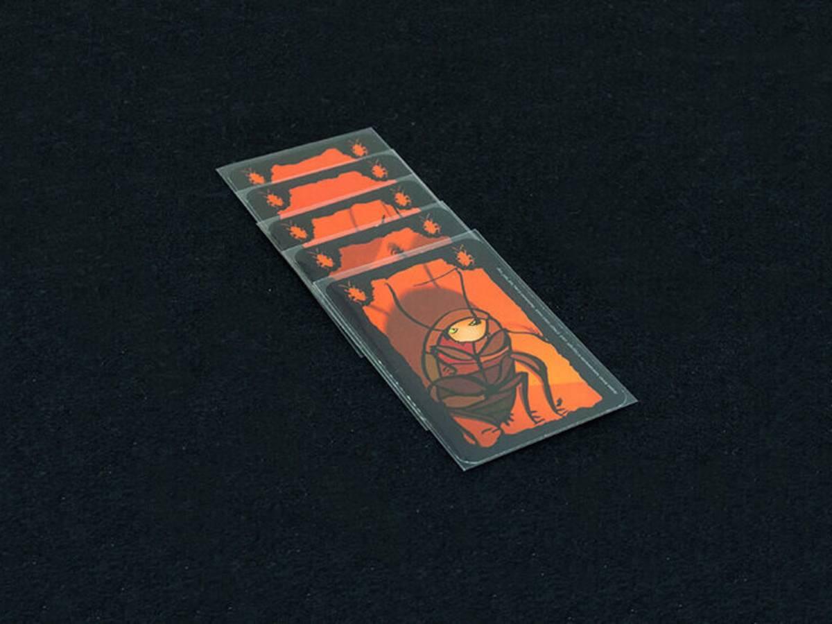 ごきぶりポーカー(Cockroach Poker / Kakerlakenpoker)の画像 #52469 FUTARIASOBIさん
