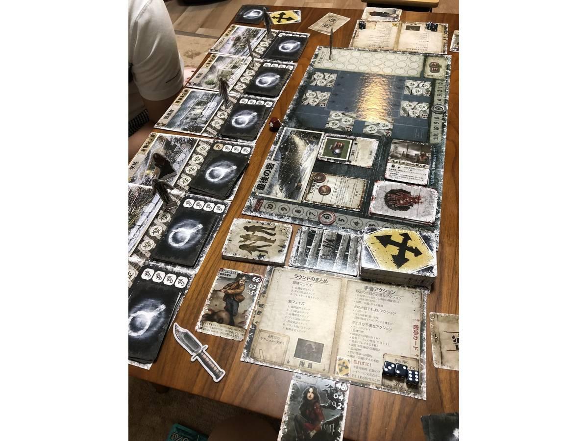 デッド・オブ・ウィンター(Dead of Winter: A Crossroads Game)の画像 #52741 Alice*さん