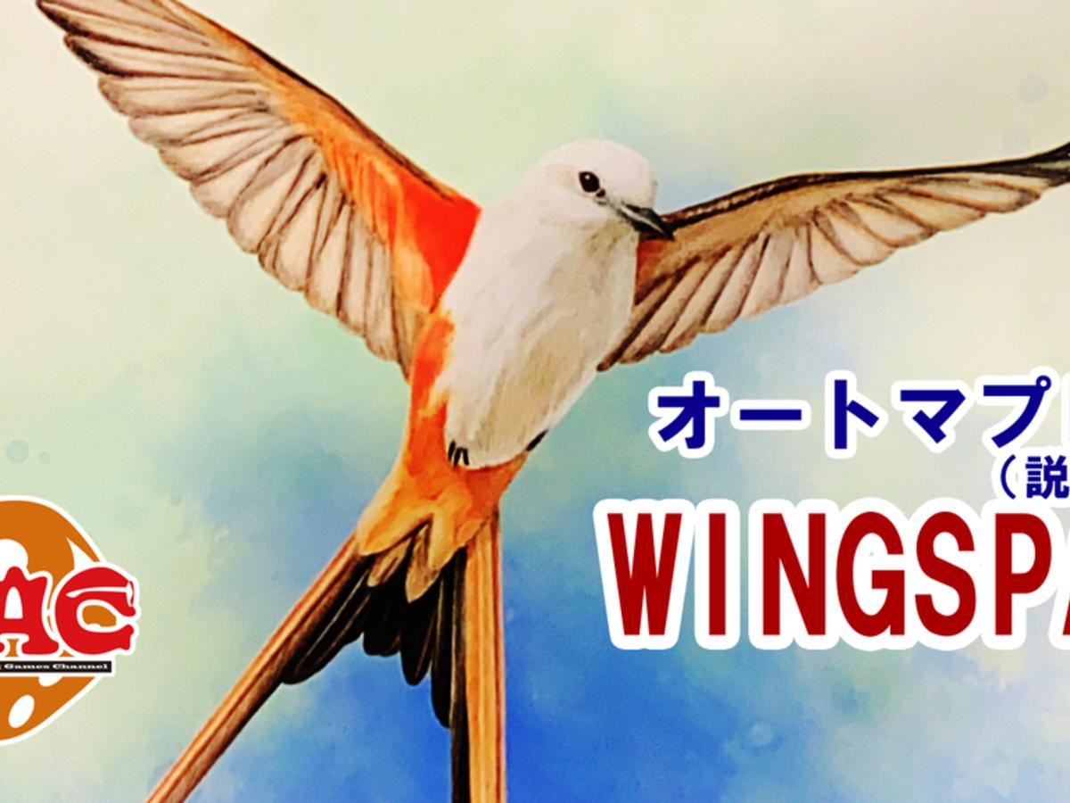 ウイングスパン(Wingspan)の画像 #61929 BAC辰巳さん