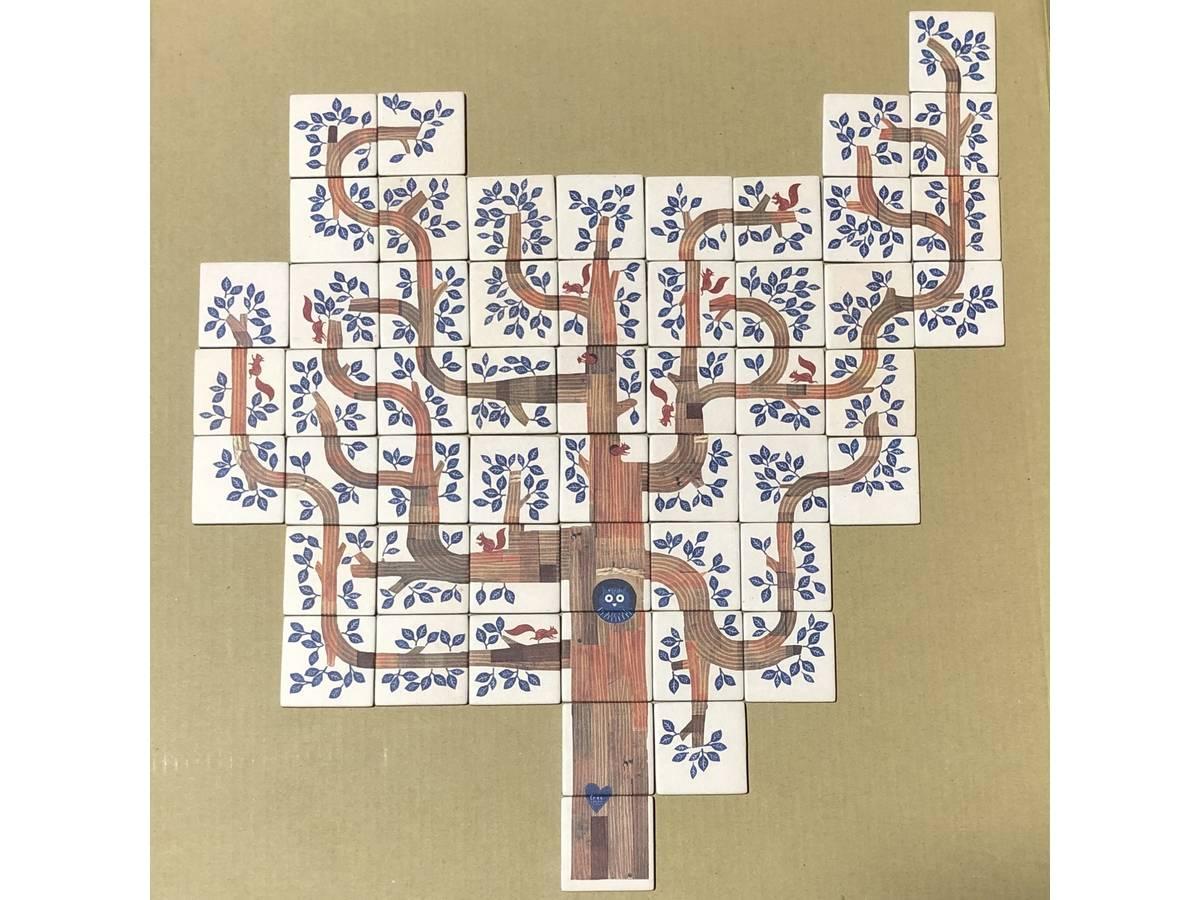 ドリーマツリー(Dream a Tree)の画像 #62917 S.Kさん