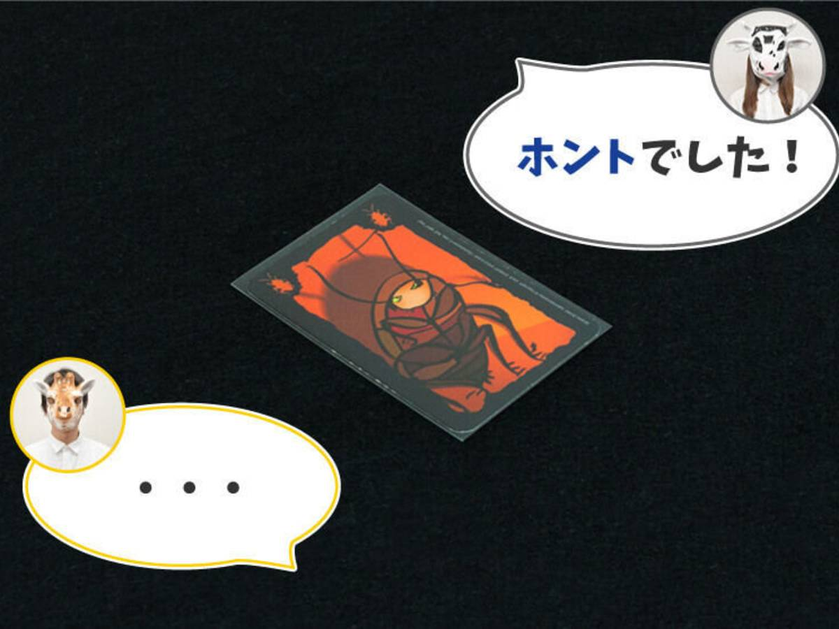 ごきぶりポーカー(Cockroach Poker / Kakerlakenpoker)の画像 #52466 FUTARIASOBIさん