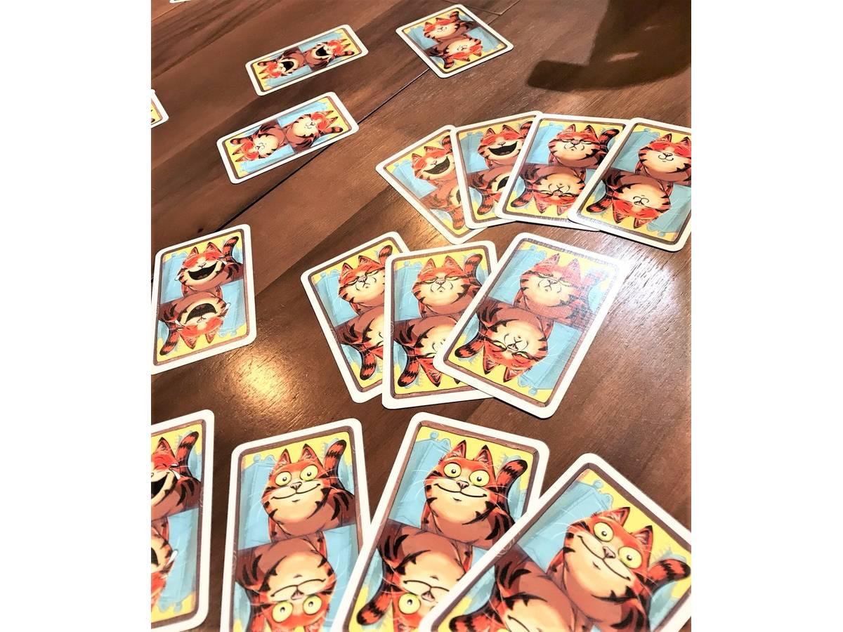 ウインクねこ(The Cat)の画像 #43995 まつながさん