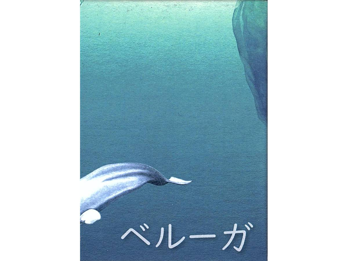 ベルーガ(Beluga)の画像 #54234 ましゃさん