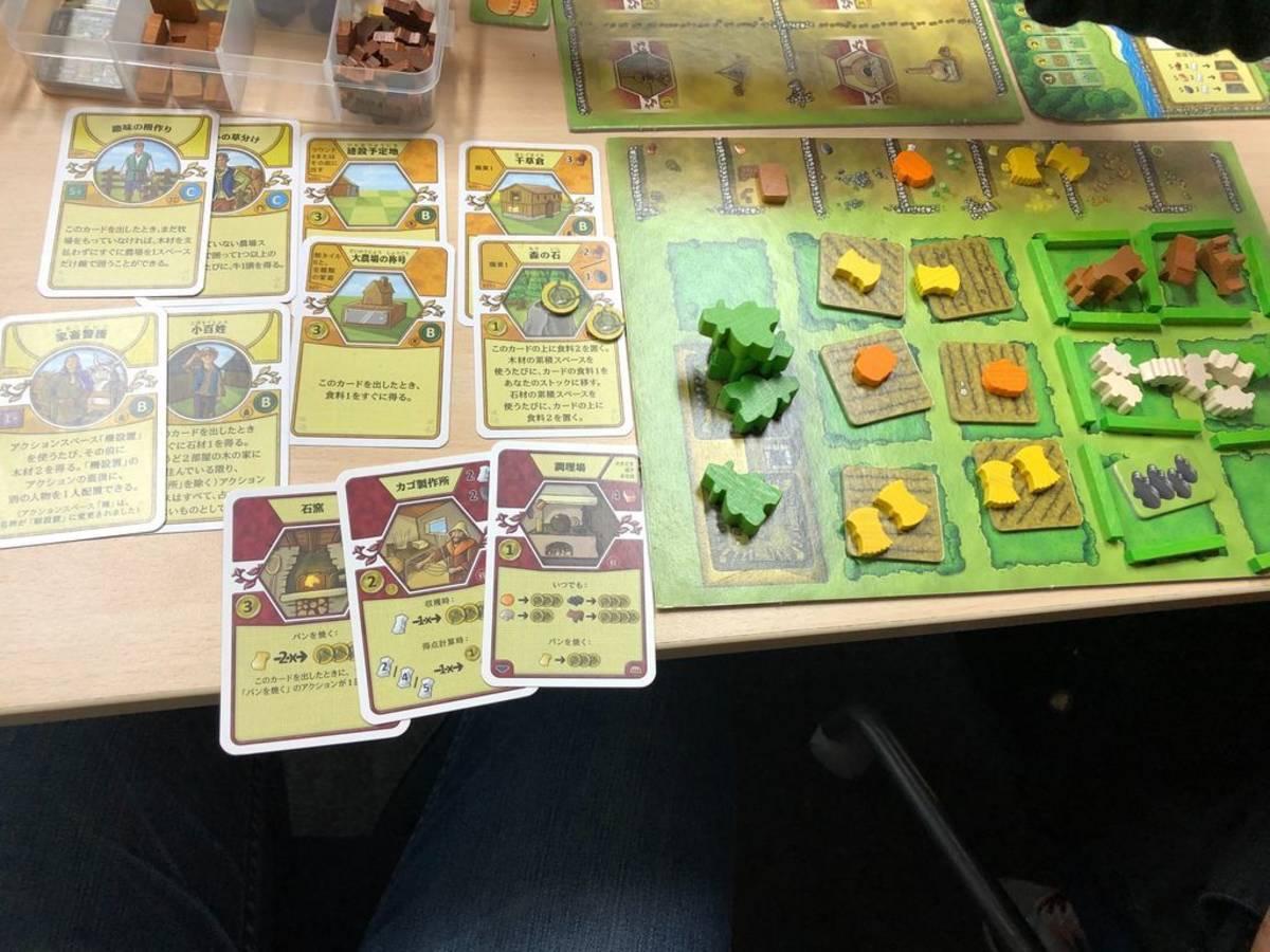 アグリコラ:ブブルクスデッキ(Agricola: Bubulcus Deck)の画像 #59337 luckさん