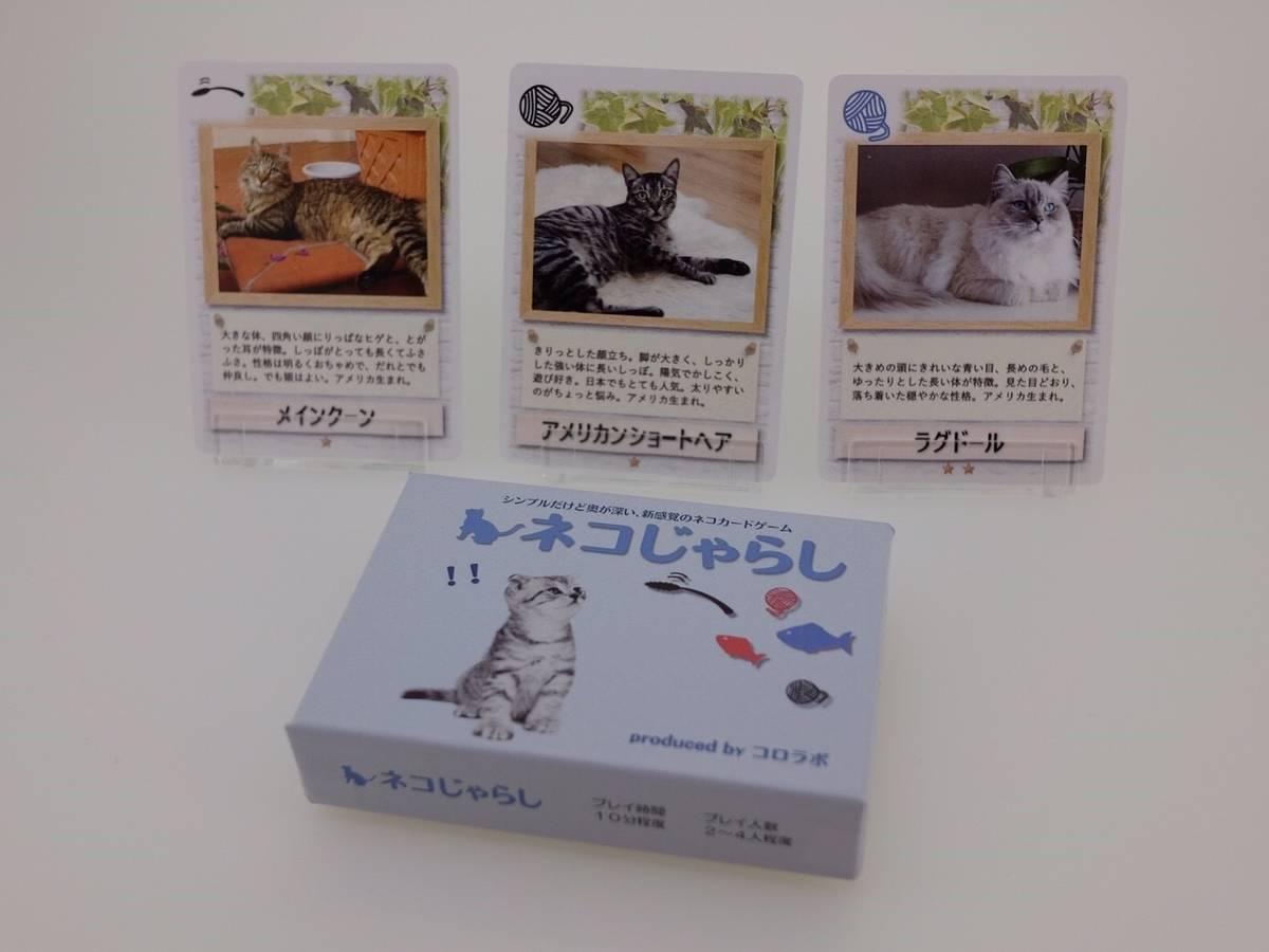 ネコじゃらし(Neko Jarashi)の画像 #42465 Kenさん