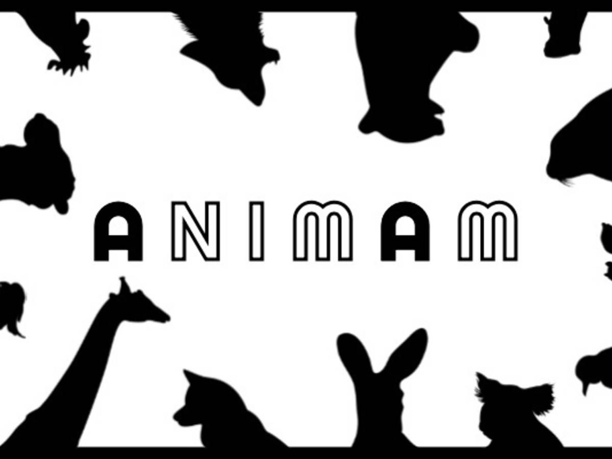 アニマム(Animam)の画像 #56867 まつながさん