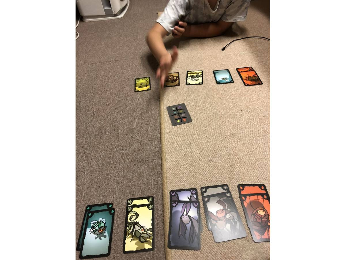 ごきぶりポーカー(Cockroach Poker / Kakerlakenpoker)の画像 #45428 Nobuaki Katouさん